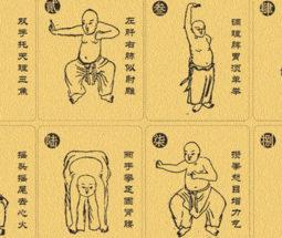 Stage de Qigong