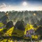 Plus grande forêt de pics karstiques de Chine – Wanfenglin 中国最大喀斯特峰林——万峰林