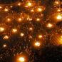 Festival des torches de l'ethnie Yi 彝族火把节