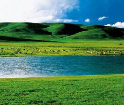 """""""云·游中国""""——中国自然之美摄影图片展"""