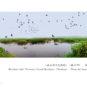 Zone humide aux mille îles du lac Weishan (municipalité Xuzhou)