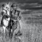 和平-察哈尔姑娘内蒙古锡林郭勒盟正蓝旗 Fille tchakhar (bannière de Zhenglan, ligue de Xilingo, Mongolie-intérieure)