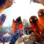 4.胡杨烤鱼 Poissons grillés au feu de bois peuplier