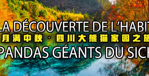 《大熊猫家园之旅》封面
