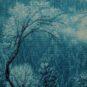 2、九寨沟雪景 Scène enneigée de Jiuzhaigou 张芸生/中国 Zhang Yunsheng/Chine